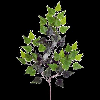 Green Leaf Background 5045*3269 transprent Png Free Download ... | 350x350